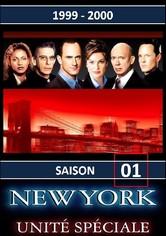 New York Unité Spéciale Saison 1
