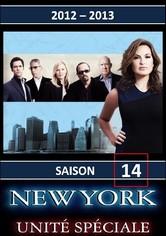 New York Unité Spéciale Saison 14
