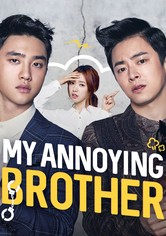 My Annoying Brother