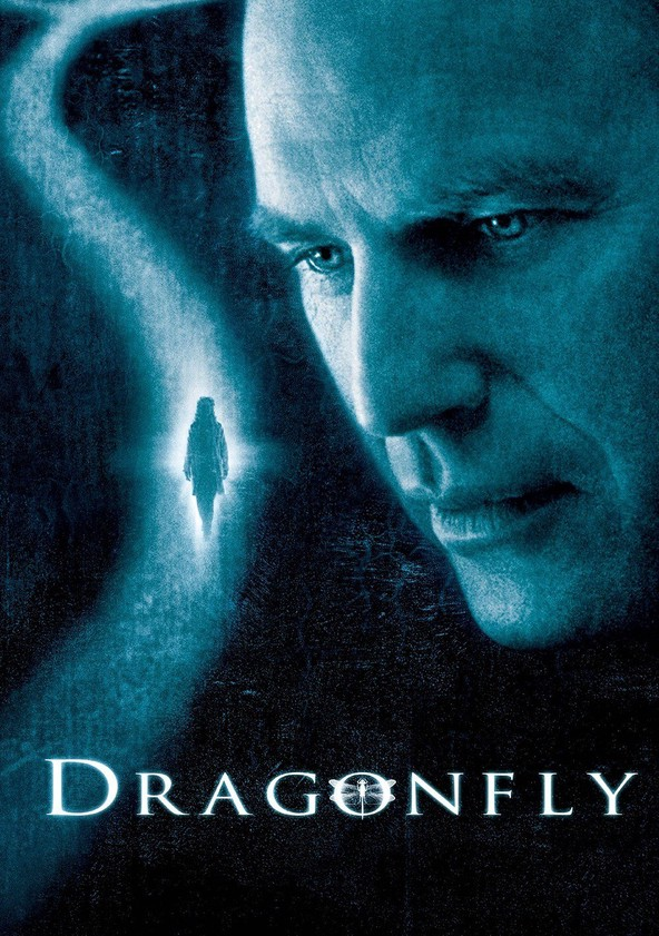 Dragonfly poster